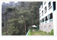 Hotel Honeymoon Inn Shimla Honeymoon Deals Packages